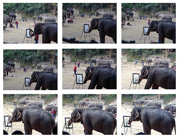elephant-art1