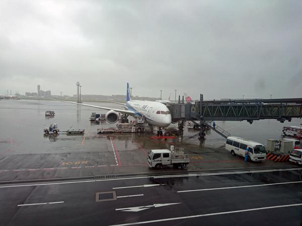 ※やっと日本に着いた。