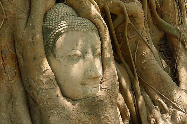 Wat Phra Mahathat4