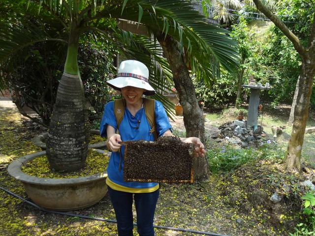 養蜂場で蜂の巣を持ってみる。