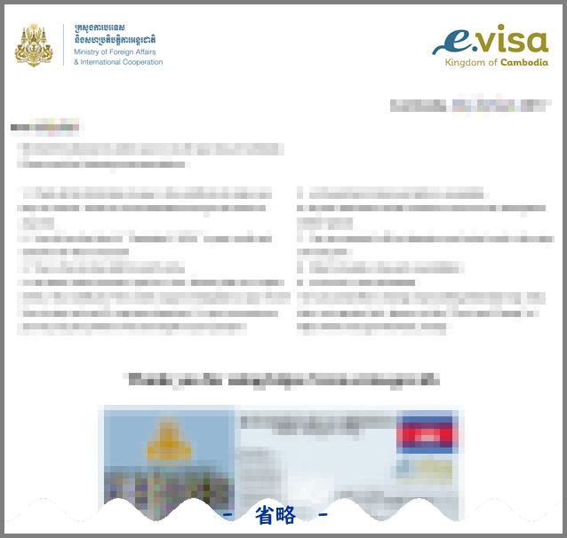 e.VISA