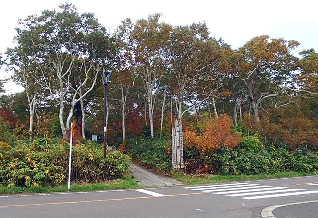 レストハウスの駐車場から道を挟んで神仙沼入口へ。