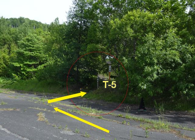 T-5フットパス標識は、道幅が広い場所なので見落とさないように。