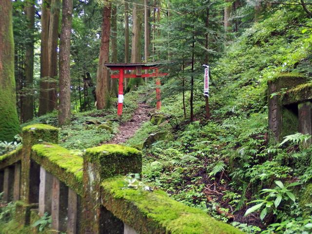 秋葉神社へ、帰り途中まで行ったが、バスの時間のタイムアップで断念